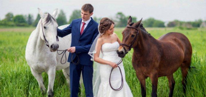 Скидка до 25% на прогулки на лошадях