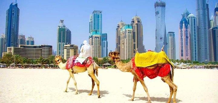 Скидка 1000 грн на участие в программе «Работай и путешествуй по Эмиратам»
