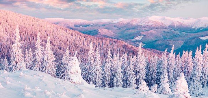 От 3 дней зимнего отдыха в отеле «Гуцул» в Косове