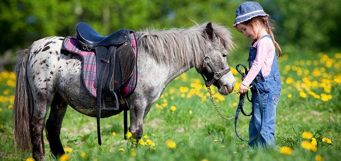 Скидка до 47% на прогулку на пони для одного или двоих от конюшни «Олимп»
