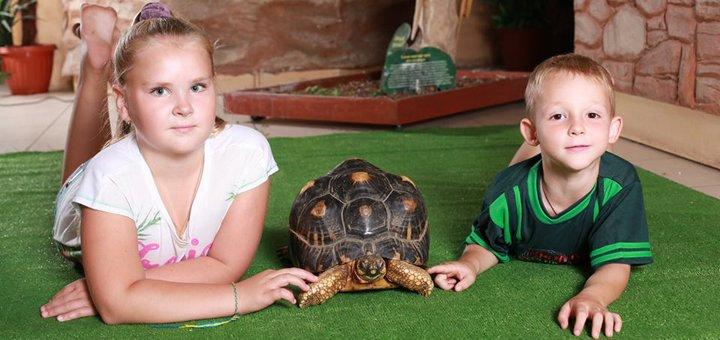 Скидка 55% на билеты для всей семьи в зоопарк «EKZOland» в Dream Town