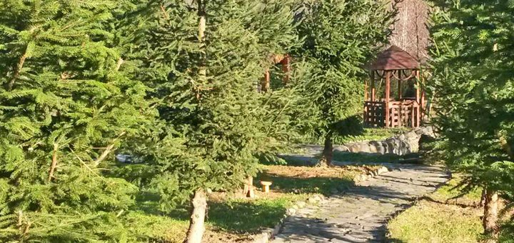 От 3 дней отдыха в отеле «Панна» с завтраками, трансфером, массажем и сауной в Солочине