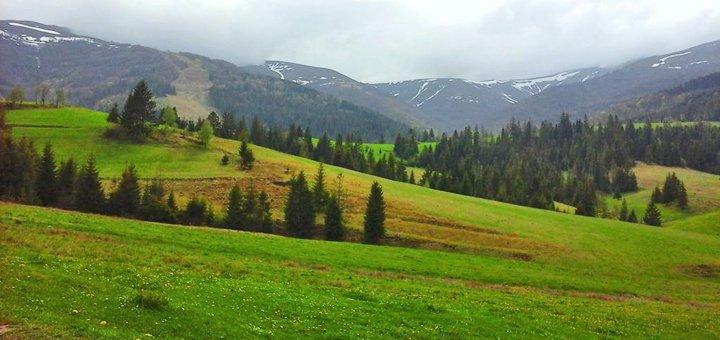 От 4 дней отдыха в частной усадьбе «Поляна Аква Резорт» в Закарпатье