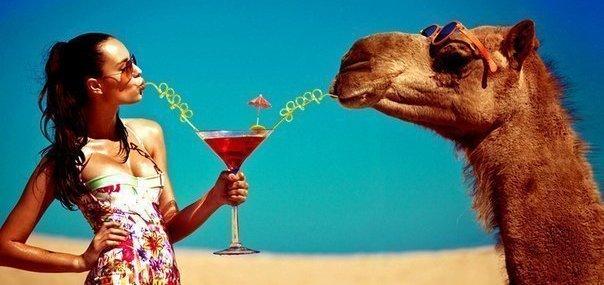 Скидка 8% на туры раннего бронирования в Египет от туристического агентства «Заманчивые туры»