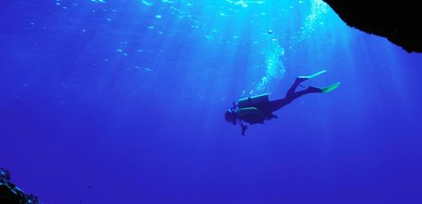 Sea_diver_underwater20180828-25560-k8cvek