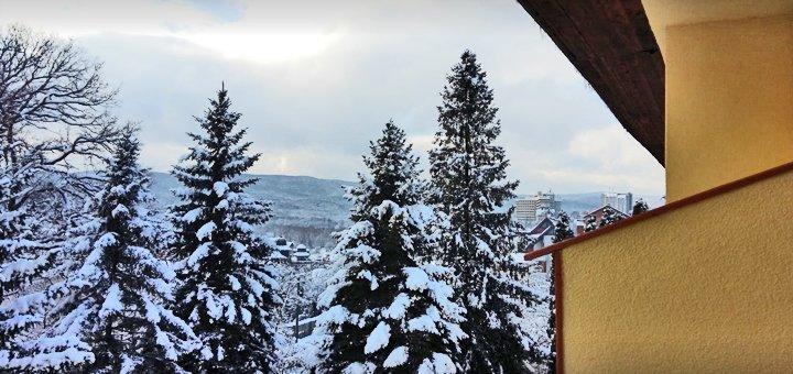 От 5 дней отдыха на Новый год с питанием и лечением в санатории «Лыбидь» в Трускавце