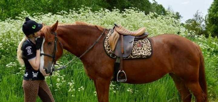 Скидка 38% на прогулки на лошадях или пони в конном клубе «Кениг»