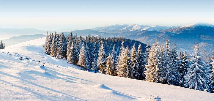 От 5 дней праздничного отдыха на Новый год и Рождество в усадьбе «Гуцульский край» в Карпатах