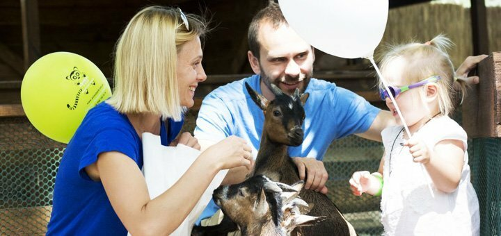 Билеты для взрослых и детей в контактный зоопарк «Animal Park» в любой день недели